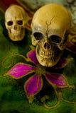 Art skull Royalty Free Stock Images