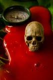 Art skull Royalty Free Stock Photography