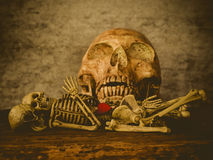 Art skull Stock Photography