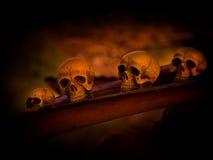 Art skull Stock Photos
