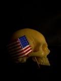 Art skull Stock Images