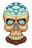 Art skull surreal. Royalty Free Stock Photography