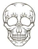 Art skull surreal. Art design skull head surreal fantasy hand pencil drawing on paper Stock Images