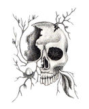 Art skull surreal . Royalty Free Stock Photos