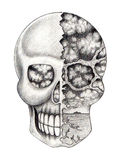 Art skull surreal. Royalty Free Stock Photos