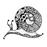 Art snail, ornate zentangle style for your design Royalty Free Stock Images