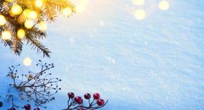 Art Snow Christmas-boom, Holly Berry en vakantielicht; echte wi Royalty-vrije Stock Afbeeldingen