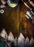Art sports fishing report background Royalty Free Stock Images