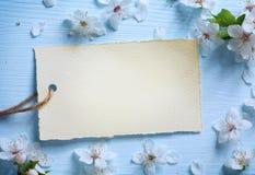 Art Spring blom- gränsbakgrund Royaltyfri Bild