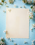Art Spring border background with blossom royalty free stock images