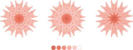Art Spring Floral, Vektorentwurf, Rosa vektor abbildung