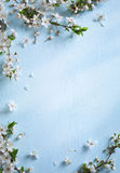Art Spring-grensachtergrond royalty-vrije stock foto's