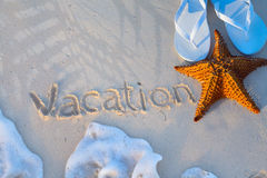 Art starfish and flip flops on a tropical beach. Summer vacation background royalty free stock photos