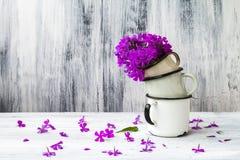 Art still life flower gladiolus wooden vintage Stock Image