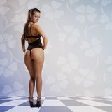 Art style with beautiful woman in sexy lingerie Stock Photos