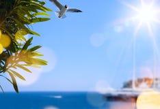 Art summer travel background Royalty Free Stock Photo