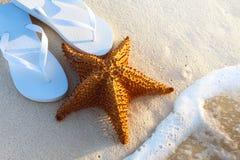 Art Summer tropical beach Stock Photography