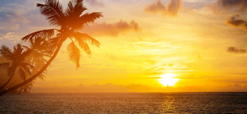 Art sunrise over the tropical beach. Art Beautiful sunrise over the tropical beach royalty free stock photos