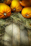 Art thanksgiving pumpkins autumn background Stock Image