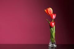 Art Three Tulip à l'arrière-plan de rose de vase Photos stock