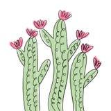 Art tiré par la main de cactus Illustration de vecteur, clipart illustration stock