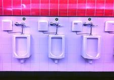 Art toilet Stock Image