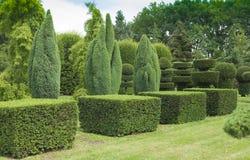 Art topiaire dans le jardin Image stock