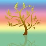Art tree Stock Photo