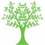 Art Tree Stock Image