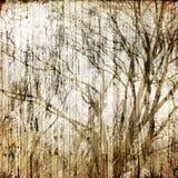 Art tree grunge background Stock Image