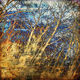 Art tree grunge background Royalty Free Stock Photography