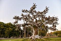 Art Tree Sculpture moderno Immagini Stock Libere da Diritti