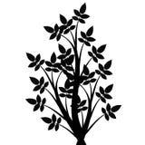 Art Tree Silhouette Stock Image