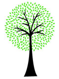 Art tree silhouette isolated on white background Royalty Free Stock Photo