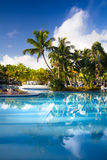 Art tropical resort hotel pool Stock Image