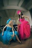 Art und Weisefrau mit zwei Luxus Stockfotografie