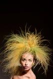 Art und Weisemädchen mit ursprünglicher Frisur Stockfotografie