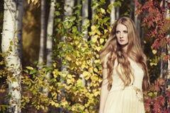 Art und Weiseportrait einer schönen jungen Frau Stockbilder