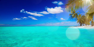 Art Untouched tropical beach Royalty Free Stock Photos