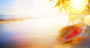 Art Vacation  background; sunset on the tropical beach Royalty Free Stock Photos
