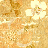 Art vintage abstract background Royalty Free Stock Image