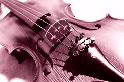 Art of violin. Stock Photography