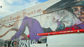 Art Walls en Wynwood almacen de metraje de vídeo