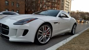 Art weißes Sportauto Jaguars F lizenzfreie stockfotografie