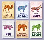 Art wild animals brochure cards. Jungle template of flyear, magazines, posters, book cover, banners, booklet. idea infographic con. Cept background. Layout royalty free illustration