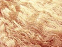Artbeschaffenheitszusammenfassungs-Modehintergrund des Haares gelockter Lizenzfreies Stockbild