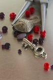 Artículos y fórceps de la joyería de la moda Imágenes de archivo libres de regalías
