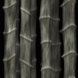 Arte abstracto de bambú Fotografía de archivo