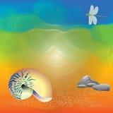 Arte abstrata do escudo na praia imagens de stock