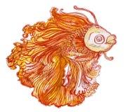 A arte aplicada tailandesa da pintura vermelha e amarela dos peixes de combate projeta Foto de Stock Royalty Free